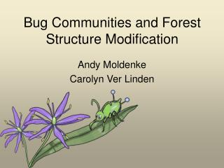 Bug Communities and Forest Structure Modification
