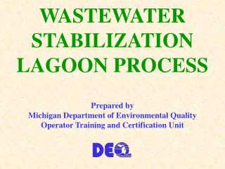 WASTEWATER STABILIZATION LAGOON PROCESS