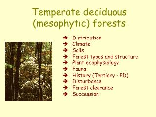 Temperate deciduous (mesophytic) forests