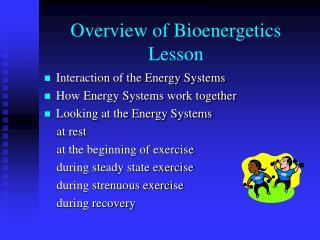 Overview of Bioenergetics Lesson