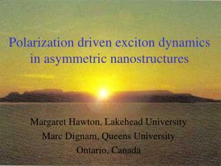 Polarization driven exciton dynamics in asymmetric nanostructures