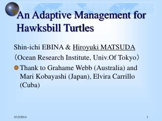 An Adaptive Management for Hawksbill Turtles