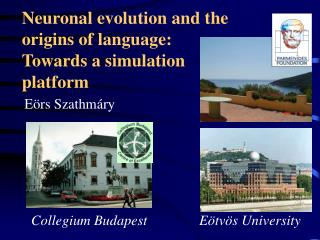 Neuronal evolution and the origins of language:  Towards a simulation  platform