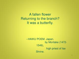 A fallen flower Returning to the branch? It was a butterfly. --HAIKU POEM. Japan.