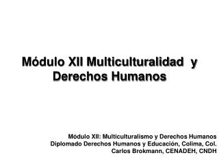 Módulo XII Multiculturalidad  y Derechos Humanos