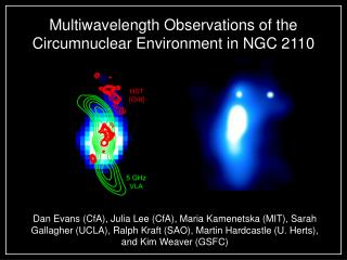 Multiwavelength Observations of the Circumnuclear Environment in NGC 2110