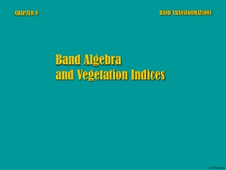 Vegetation Indices