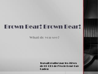 Brown  Bear ! Brown  Bear !