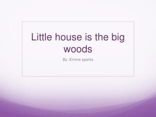 Little house is the big woods