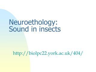 Neuroethology: Sound in insects