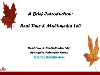 A Brief Introduction: Real Time & Multimedia Lab