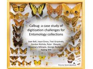 Calbug : a case study of digitization challenges for Entomology collections