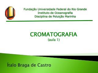 Fundação Universidade Federal do Rio Grande Instituto  de Oceanografia