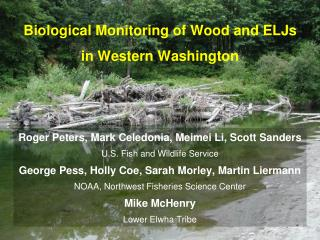 Biological Monitoring of Wood and ELJs in Western Washington