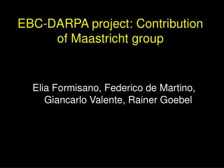 EBC-DARPA project: Contribution of Maastricht group