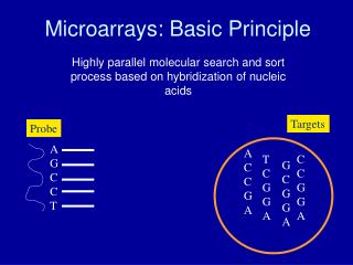 Microarrays: Basic Principle