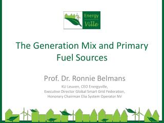 The  Generation  Mix  and Primary Fuel  Sources