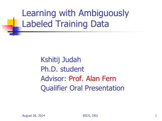 Learning with Ambiguously Labeled Training Data