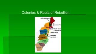 Colonies & Roots of Rebellion
