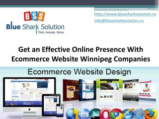 effective online presence with ecommerce website Winnipeg