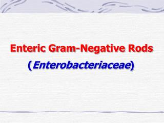 Enteric Gram-Negative Rods        ( Enterobacteriaceae )