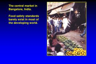 The central market in Bangalore, India. Food safety standards barely exist in most of