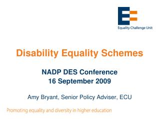 Disability Equality Schemes