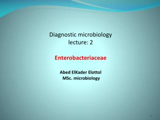 Diagnostic microbiology lecture: 2 Enterobacteriaceae Abed  ElKader Elottol MSc . microbiology