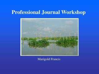 Professional Journal Workshop