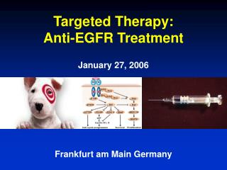 Targeted Therapy:  Anti-EGFR Treatment