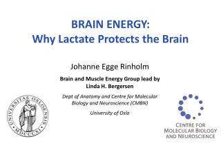 BRAIN ENERGY:  Why Lactate Protects the Brain
