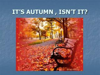IT'S AUTUMN , ISN'T IT?