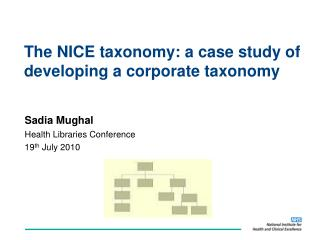 The NICE taxonomy: a case study of developing a corporate taxonomy