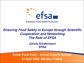 Polish Focal Point – Annual Experts Summit 24 April 2009, Warsaw, Poland
