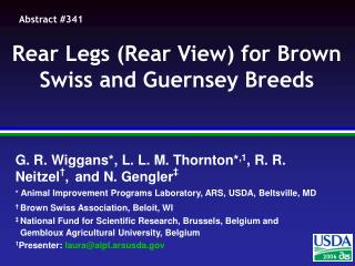 Rear Legs (Rear View) for Brown Swiss and Guernsey Breeds