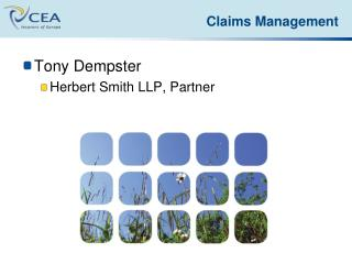Tony Dempster Herbert Smith LLP, Partner