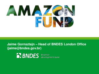 Jaime Gornsztejn – Head of BNDES London Office (jaime@bndes.br)