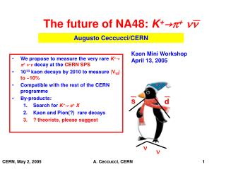 The future of NA48:  K + → p + nn