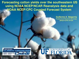 Forecasting cotton yields over the southeastern US using NOAA NCEP/NCAR Reanalysis data and  NOAA NCEP/CPC Coupled Forec