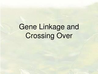 Gene Linkage and Crossing Over
