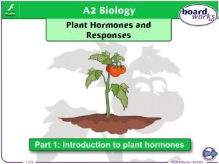 Part II: Phytohormones and Tropisms