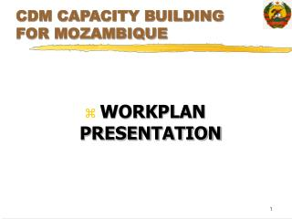 CDM CAPACITY BUILDING FOR MOZAMBIQUE