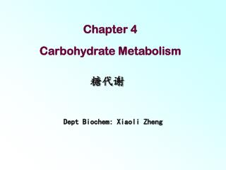 Chapter 4  Carbohydrate Metabolism