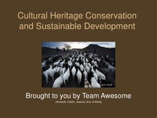 Cultural Heritage Conservation and Sustainable Development