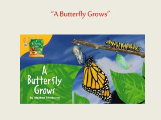 """A Butterfly Grows"""