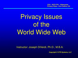 Privacy Issues of the World Wide Web