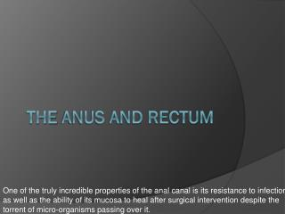 The  Anus and Rectum