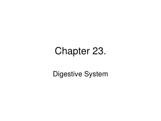 Chapter 23.
