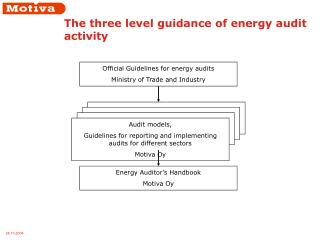 The three level guidance of energy audit activity