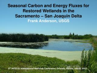 Seasonal Carbon and Energy Fluxes for Restored Wetlands in the Sacramento – San Joaquin Delta